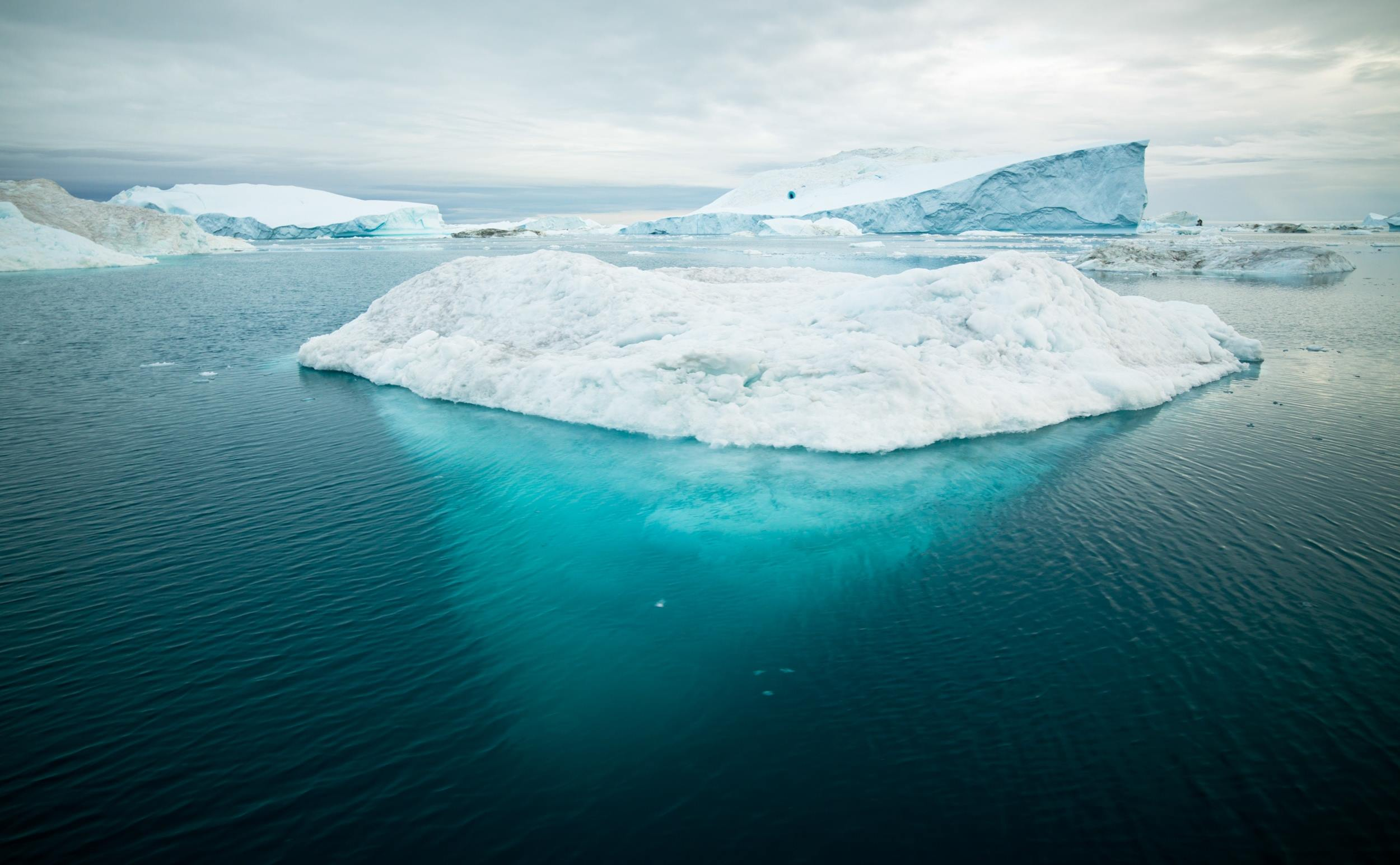 Climate Foresight