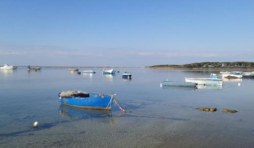 Puglia: strategie di adattamento per acque e aree costiere